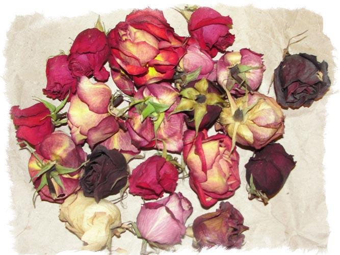 Заговоры на розы