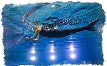 как получить силы русалки без хвоста