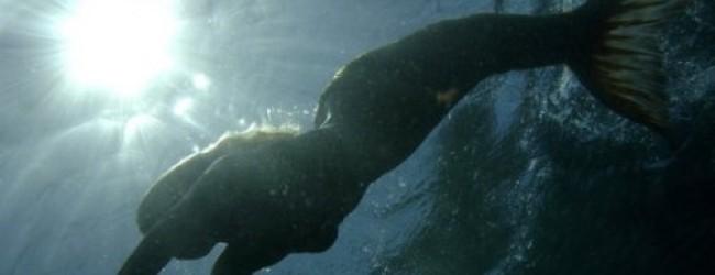 Как стать русалкой без полнолуния, в полнолуние?
