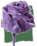 цветы искусственные в доме приметы