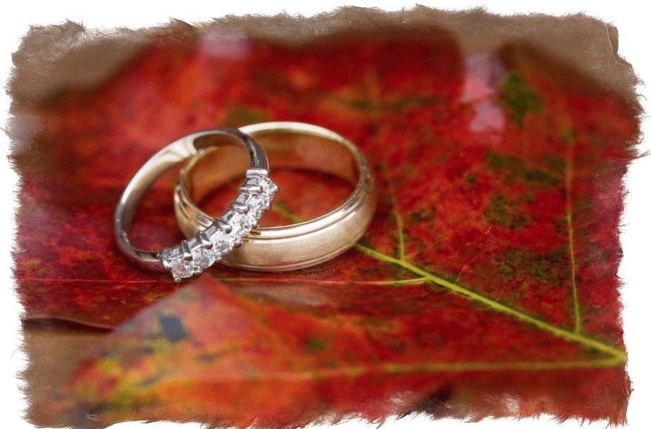 Приметы.потерять обручальное кольцо
