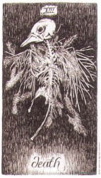 Дикое неизвестное Таро (галерея)— уникальная колода, которая прольет свет на грядущие события