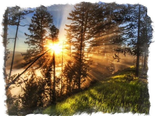 славянский миф ярило солнце