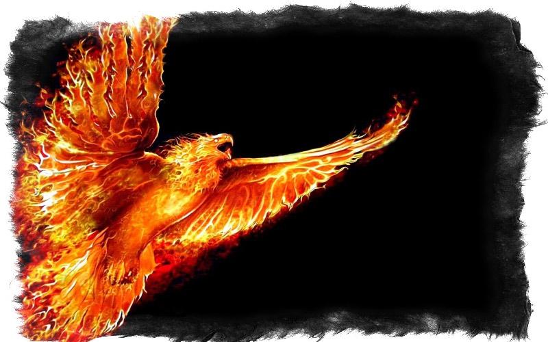 что означает птица феникс