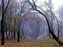 Гиблые места и аномальные зоны России
