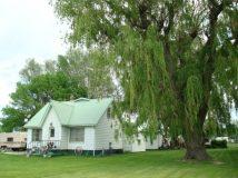 Какие деревья можно и нельзя сажать возле дома по приметам