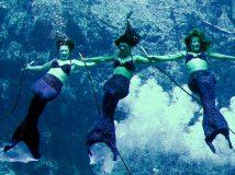 Существуют ли русалки — доказательства того, что эти удивительные создания среди нас