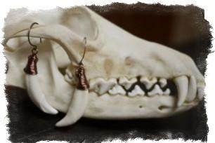 Клык волка (амулет) — значение