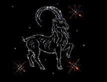 Камень козерога женщины по гороскопу