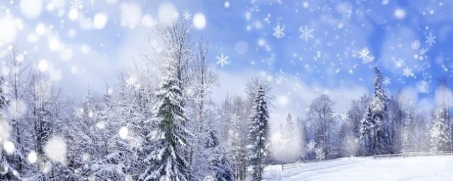 Народные приметы о зиме