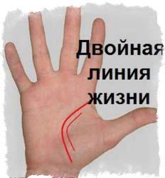 хиромантия знаки на руке и их значение