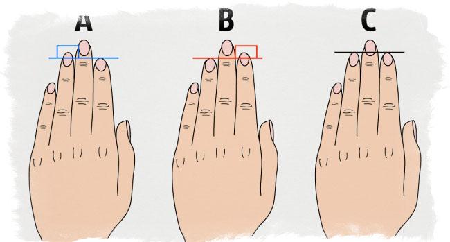 длина пальцев