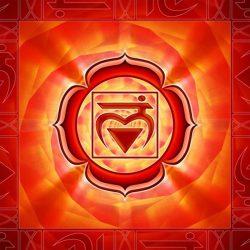 чакры Муладхары