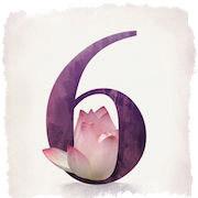 магия числа 6