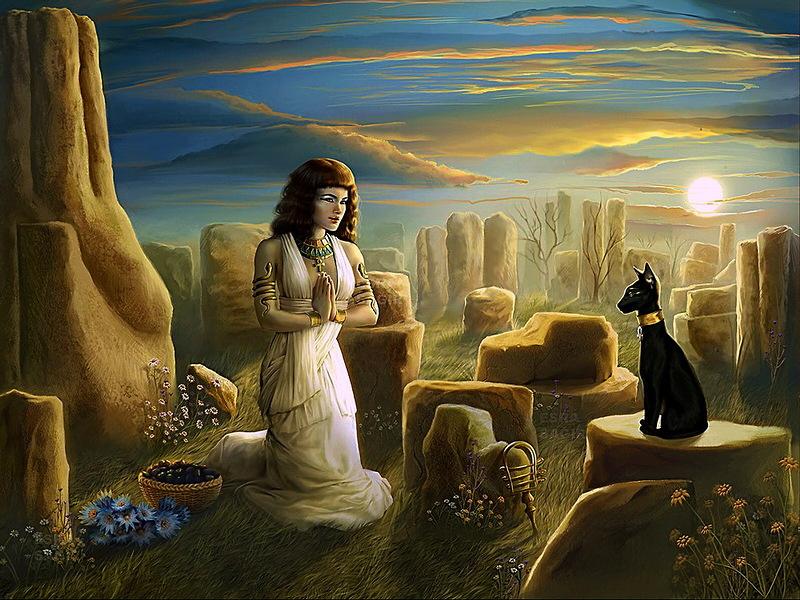 мистические свойства кошек