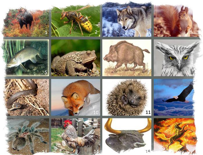славянский гороскоп животных