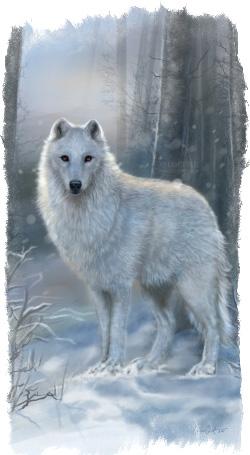 Гигантский волк Фенрир и его сыновья